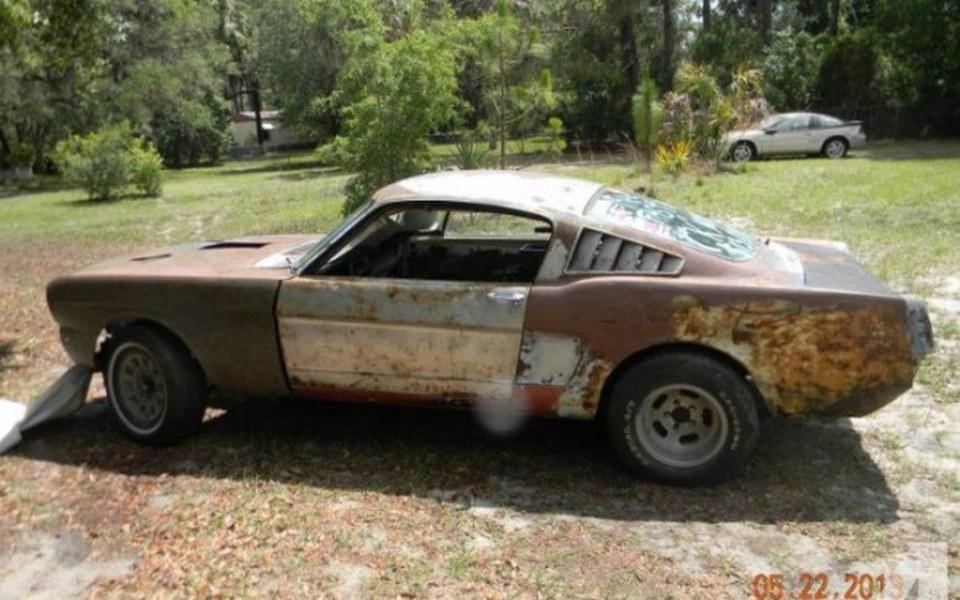Zbiórka Mustang! - zdjęcie główne