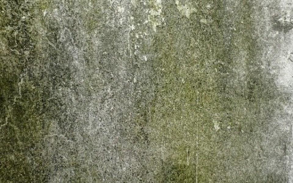 Zbiórka Remont dachu, naprawa wentylacji - zdjęcie główne