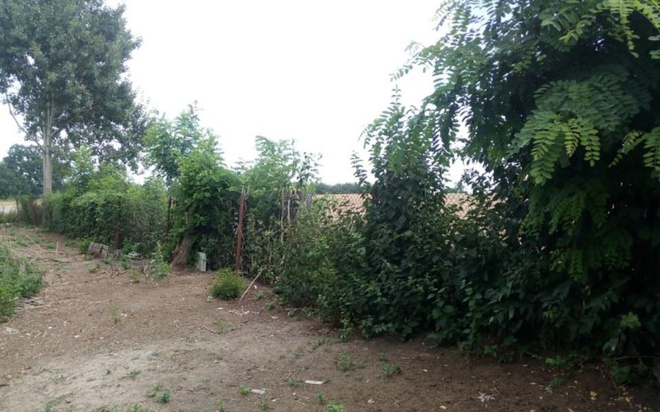Zbiórka Na nowe ogrodzenie Zwierzogrodu - zdjęcie główne